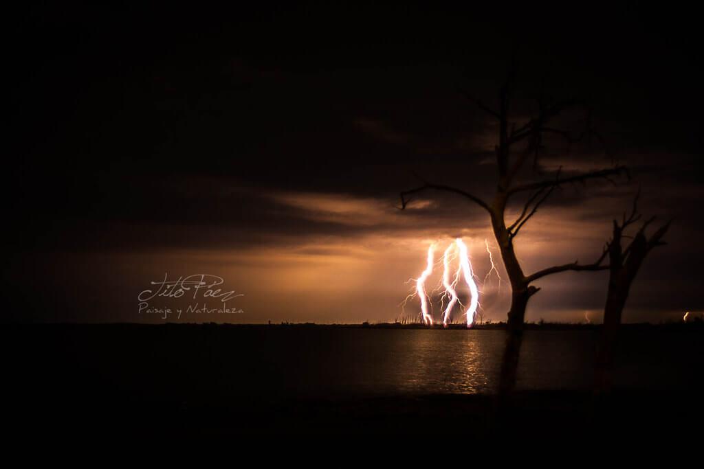 """Gerardo """"Tito"""" Paez - lightning"""