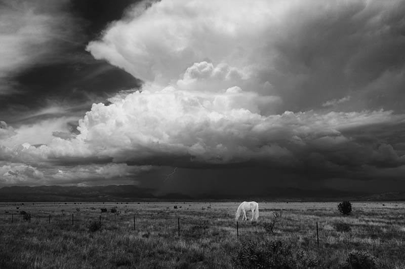 Carolyn D'Alessandro - Monsoon season, New Mexico