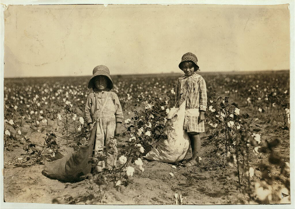 Lewis Wickes Hine - boys picking cotton