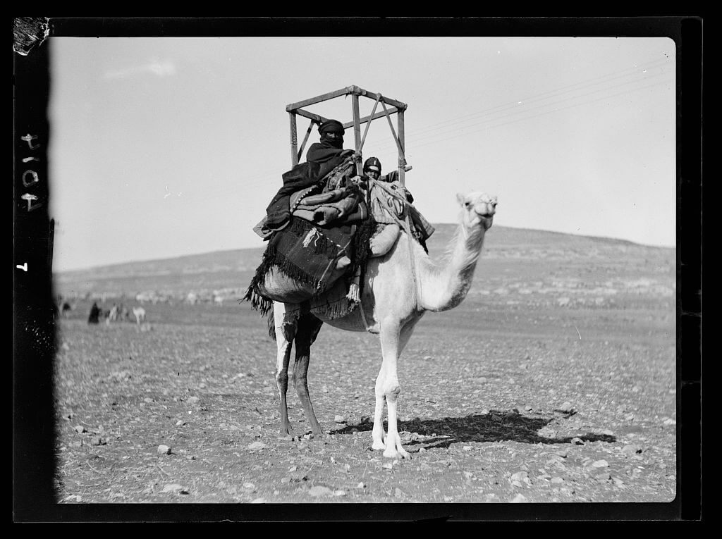 Bedouin woman and child on a camel