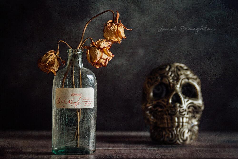 Still Life - The Skull