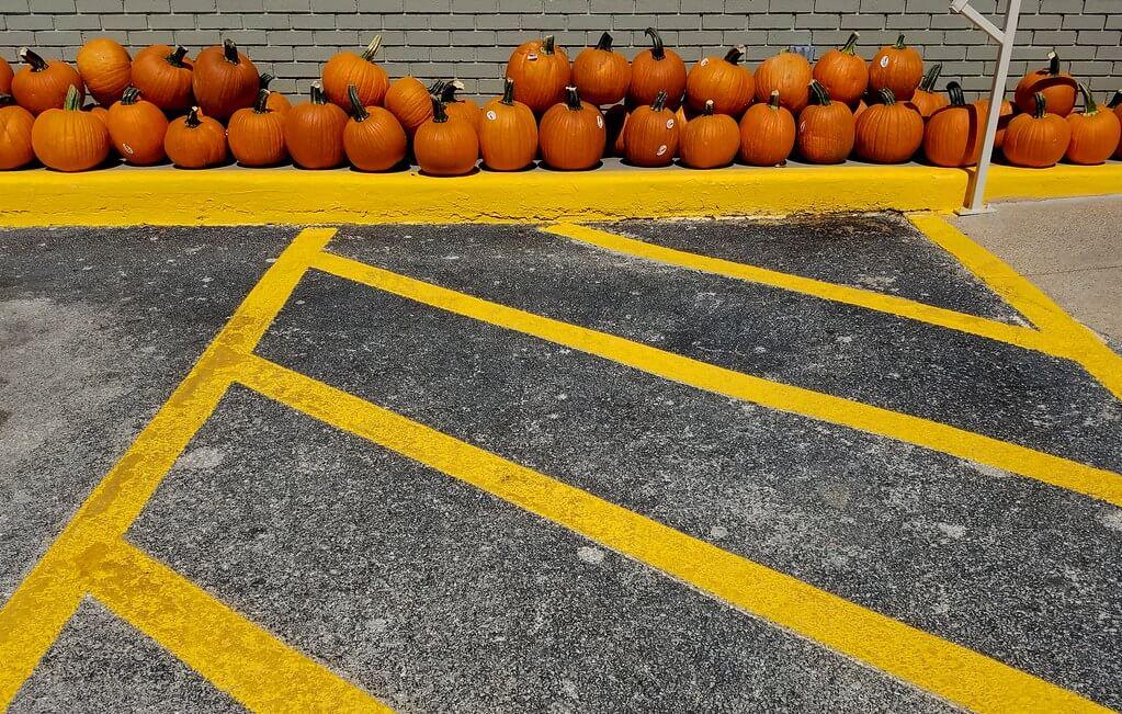 Gilbert Mercier - Halloween pumpkins lineup