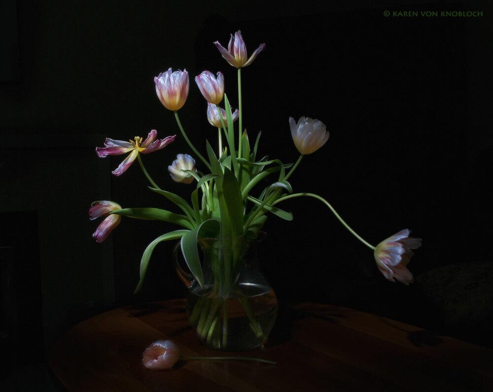 KvonK - tulips still life