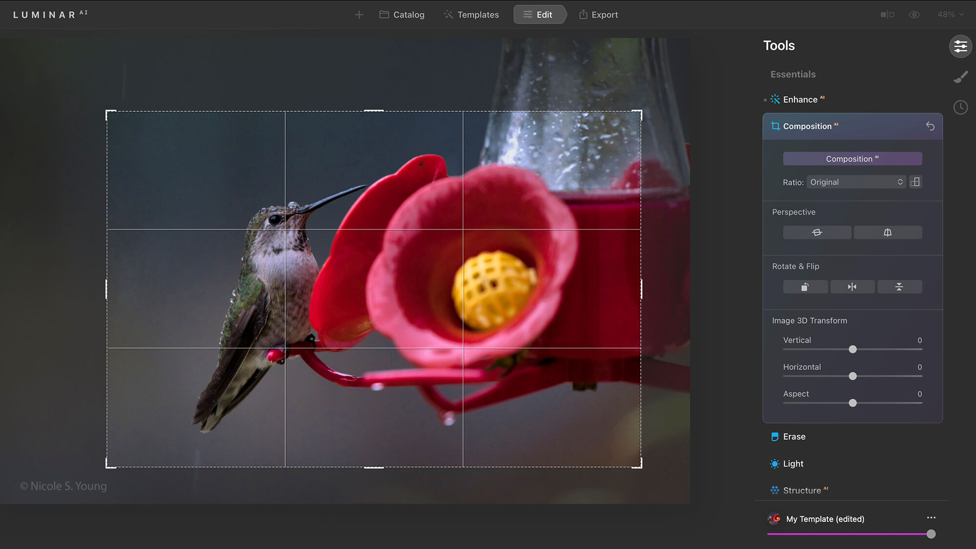 Editing software opened for cropping
