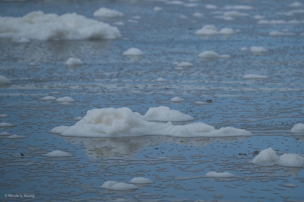 ice floats in water before