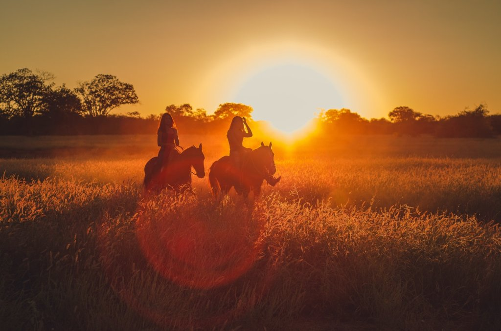 Sunset horse ride for best time to take photos outside